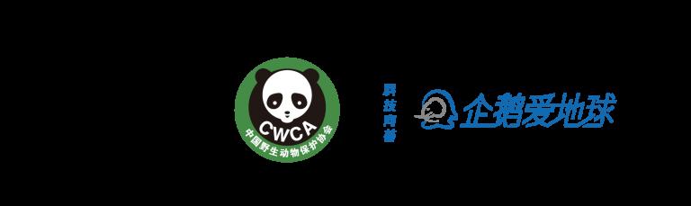 logo组合-03